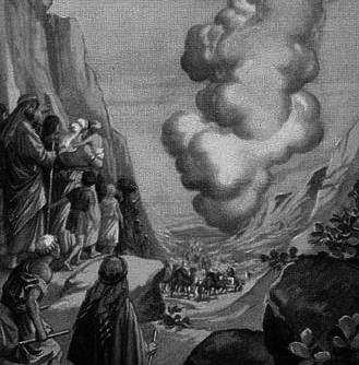 11.exodus2グレー